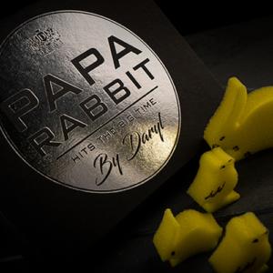 Papa Rabbit Hits the Big Time