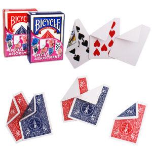 Rider Back Trickkarten - Spezielles Kartensortiment - Special Assortment - magischer-anzeiger.de