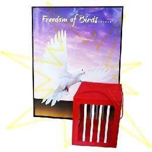 Freedom of Birds